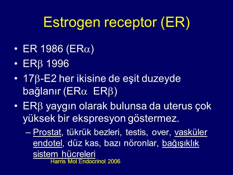 Estrogen receptor (ER)