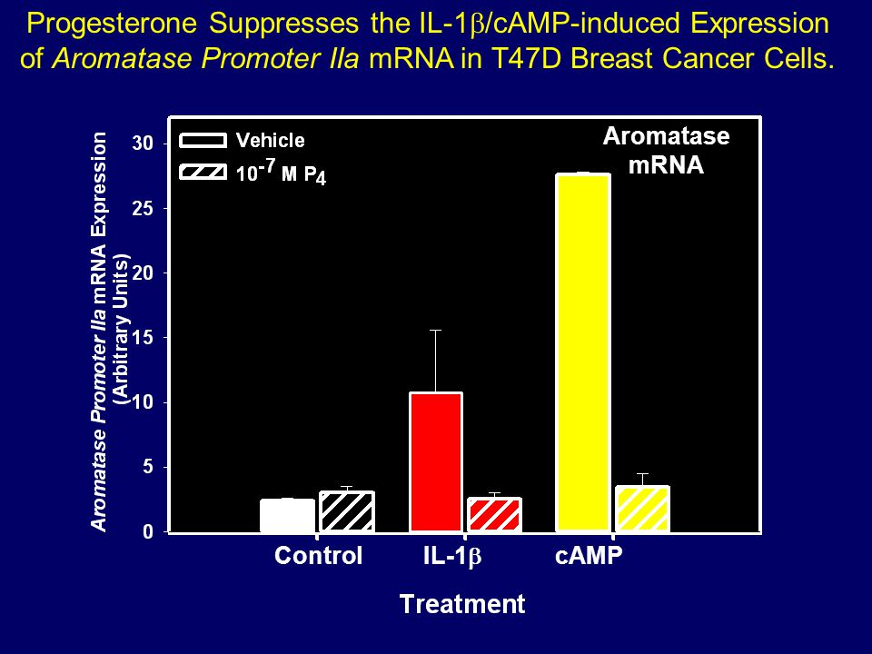 Progesterone Suppresses the IL-1b/cAMP-induced Expression of Aromatase Promoter IIa mRNA in T47D Breast Cancer Cells.