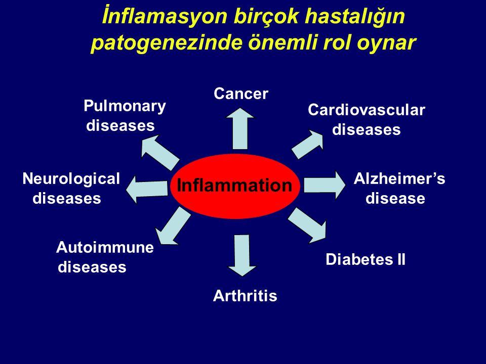 İnflamasyon birçok hastalığın patogenezinde önemli rol oynar