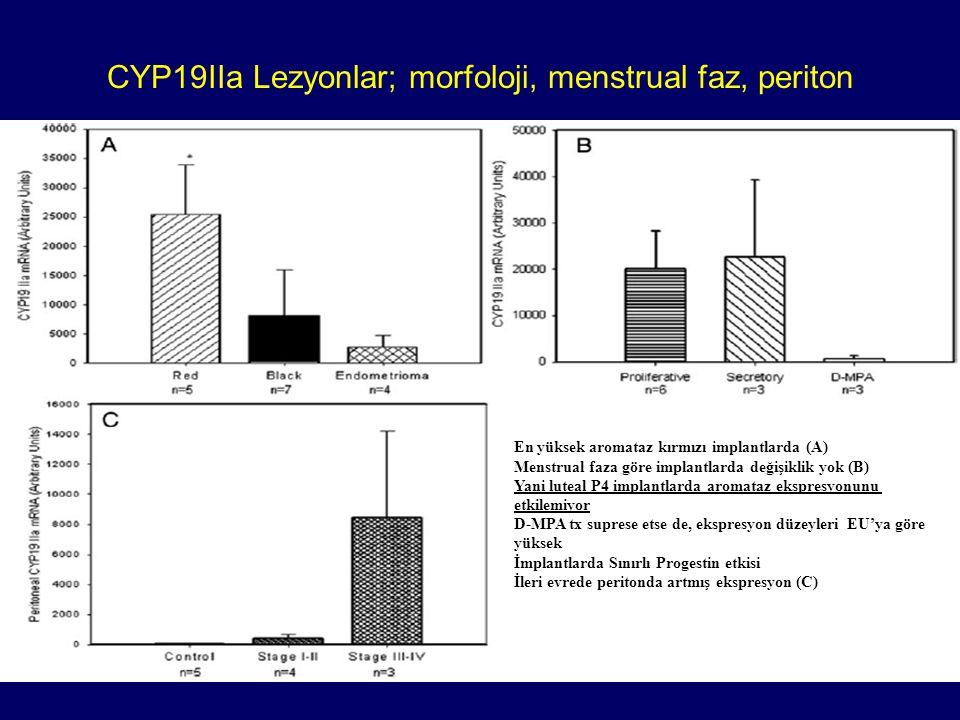 CYP19IIa Lezyonlar; morfoloji, menstrual faz, periton