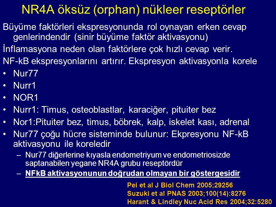 NR4A öksüz (orphan) nükleer reseptörler