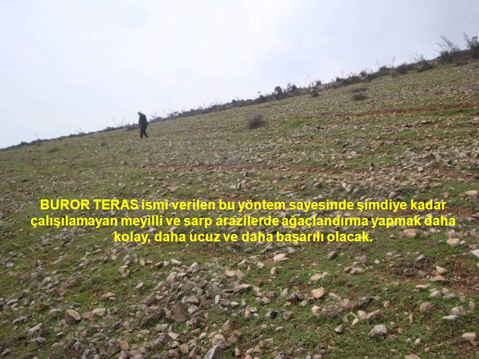 BUROR TERAS ismi verilen bu yöntem sayesinde şimdiye kadar çalışılamayan meyilli ve sarp arazilerde ağaçlandırma yapmak daha kolay, daha ucuz ve daha başarılı olacak.