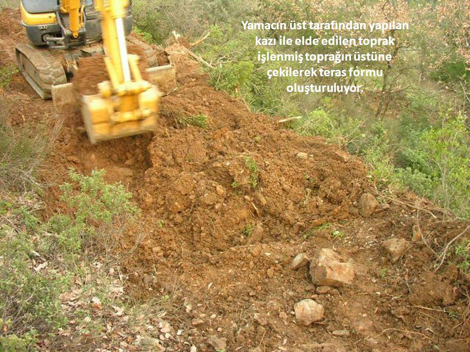 Yamacın üst tarafından yapılan kazı ile elde edilen toprak işlenmiş toprağın üstüne çekilerek teras formu oluşturuluyor.