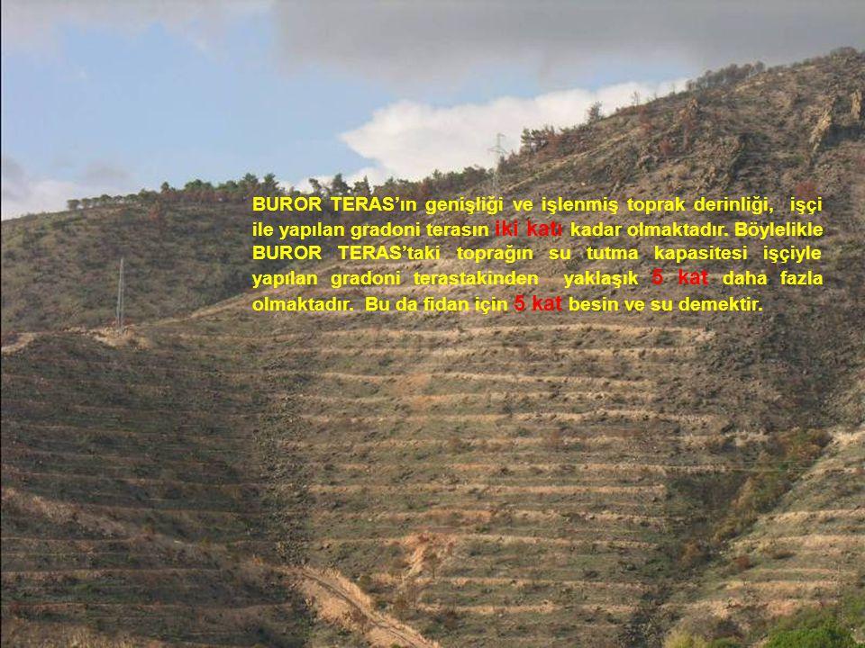 BUROR TERAS'ın genişliği ve işlenmiş toprak derinliği, işçi ile yapılan gradoni terasın iki katı kadar olmaktadır.