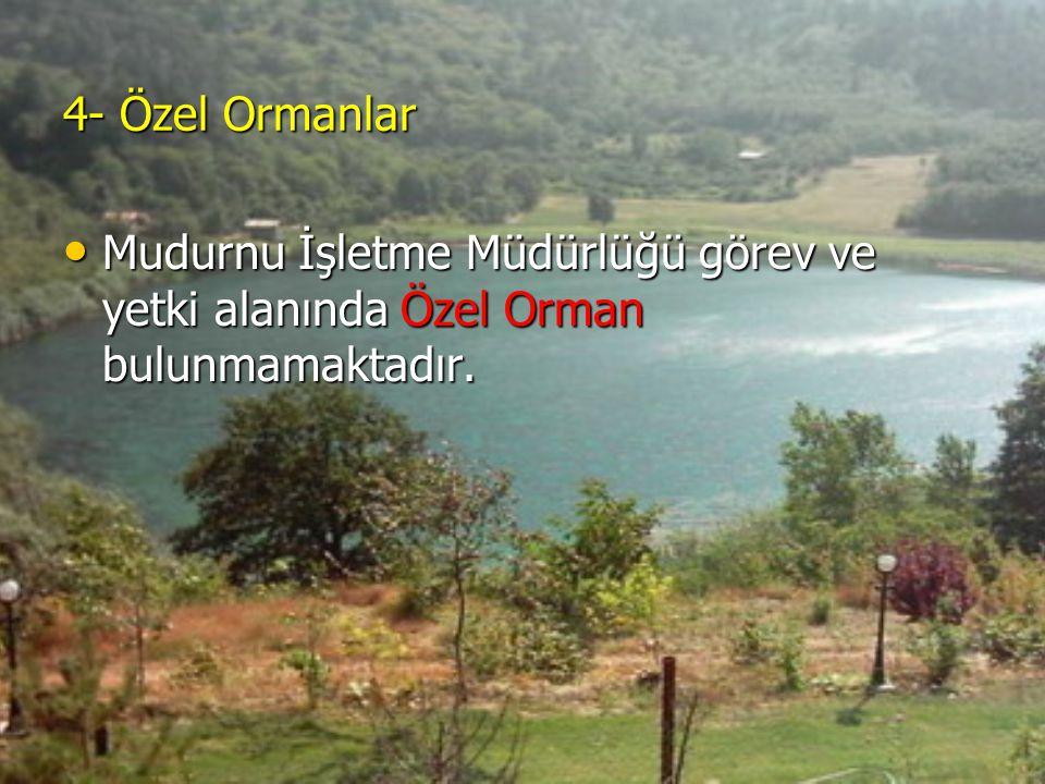 4- Özel Ormanlar Mudurnu İşletme Müdürlüğü görev ve yetki alanında Özel Orman bulunmamaktadır.