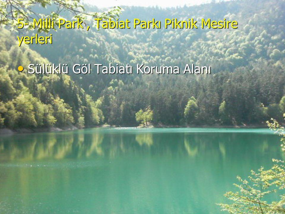 5- Milli Park , Tabiat Parkı Piknik Mesire yerleri