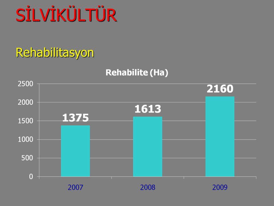 SİLVİKÜLTÜR Rehabilitasyon