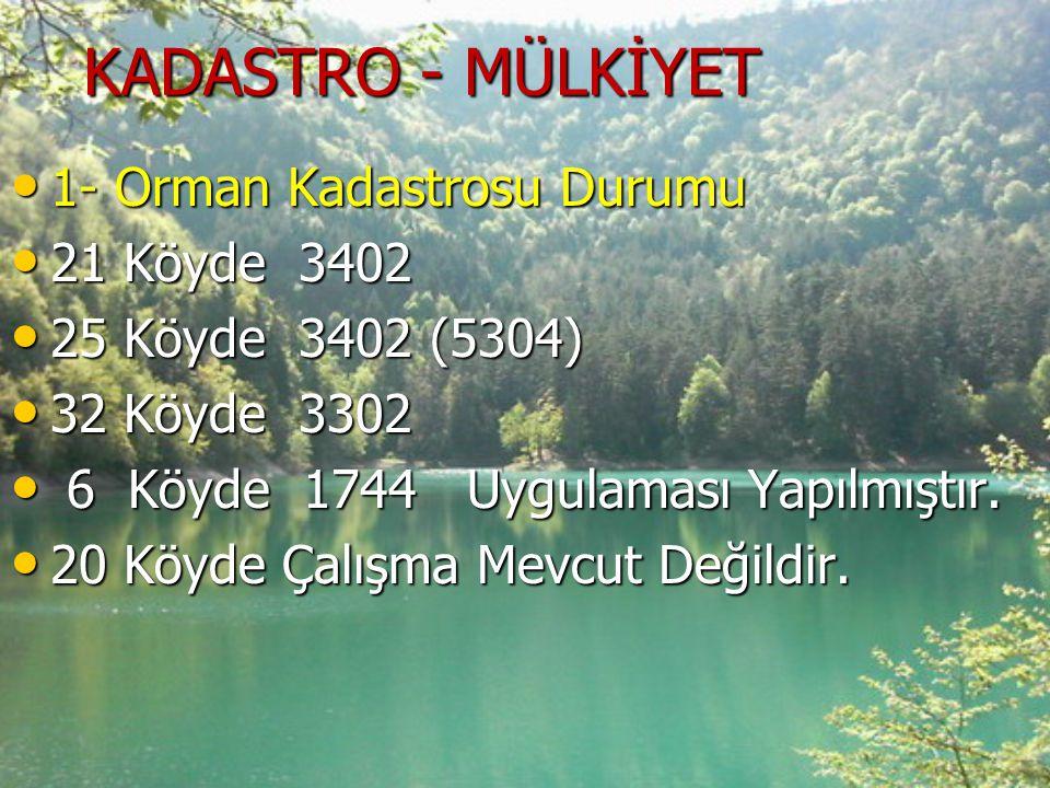 KADASTRO - MÜLKİYET 1- Orman Kadastrosu Durumu 21 Köyde 3402