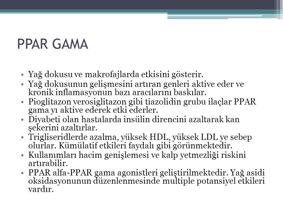 PPAR GAMA Yağ dokusu ve makrofajlarda etkisini gösterir.
