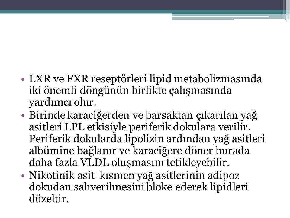 LXR ve FXR reseptörleri lipid metabolizmasında iki önemli döngünün birlikte çalışmasında yardımcı olur.