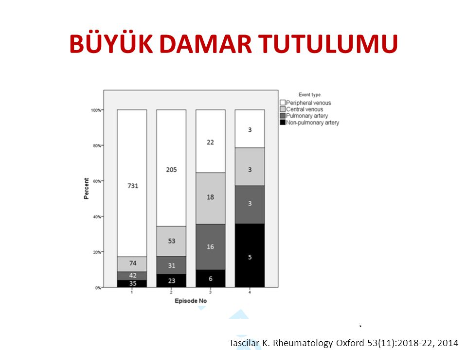 BÜYÜK DAMAR TUTULUMU Tascilar K. Rheumatology Oxford 53(11):2018-22, 2014