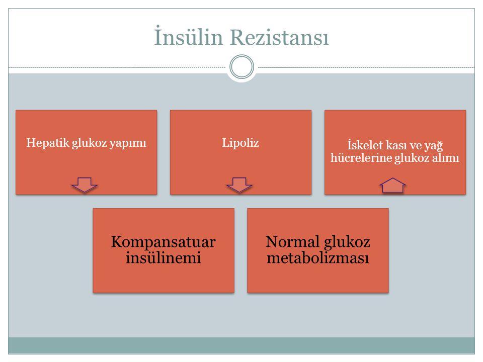 İnsülin Rezistansı Kompansatuar insülinemi Normal glukoz metabolizması