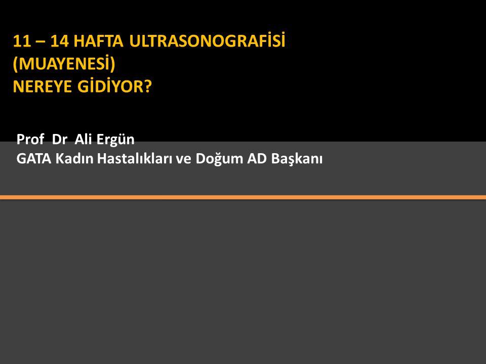 11 – 14 HAFTA ULTRASONOGRAFİSİ (MUAYENESİ) NEREYE GİDİYOR