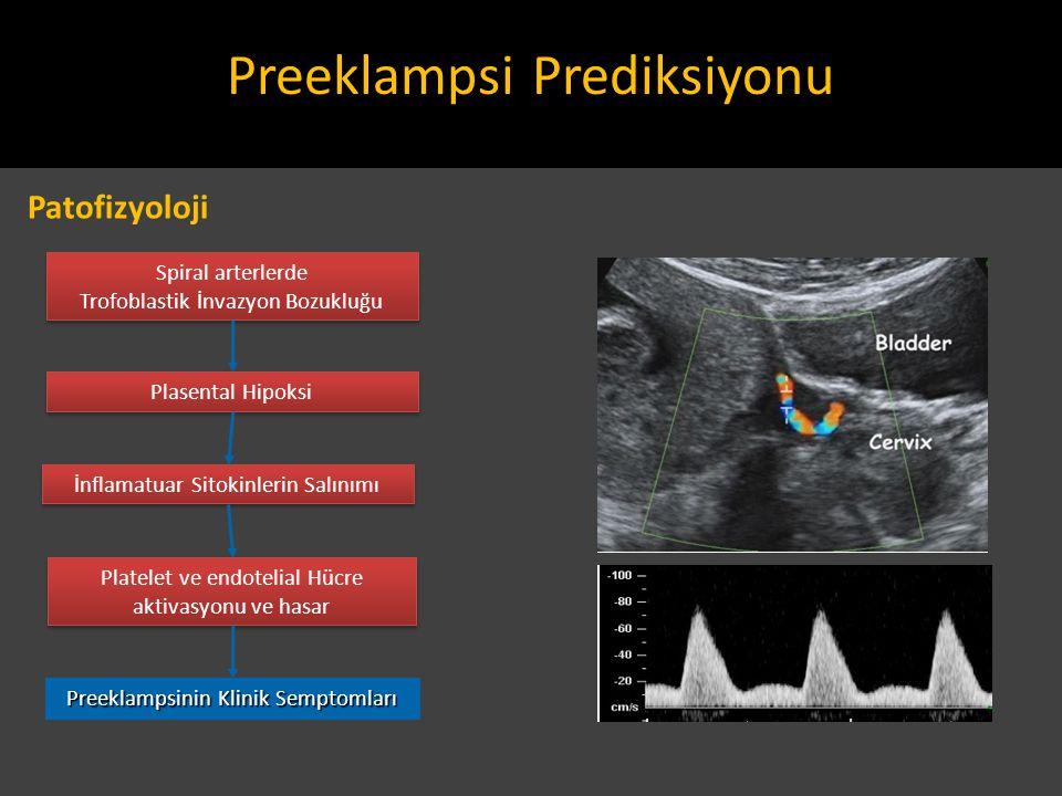 Preeklampsi Prediksiyonu