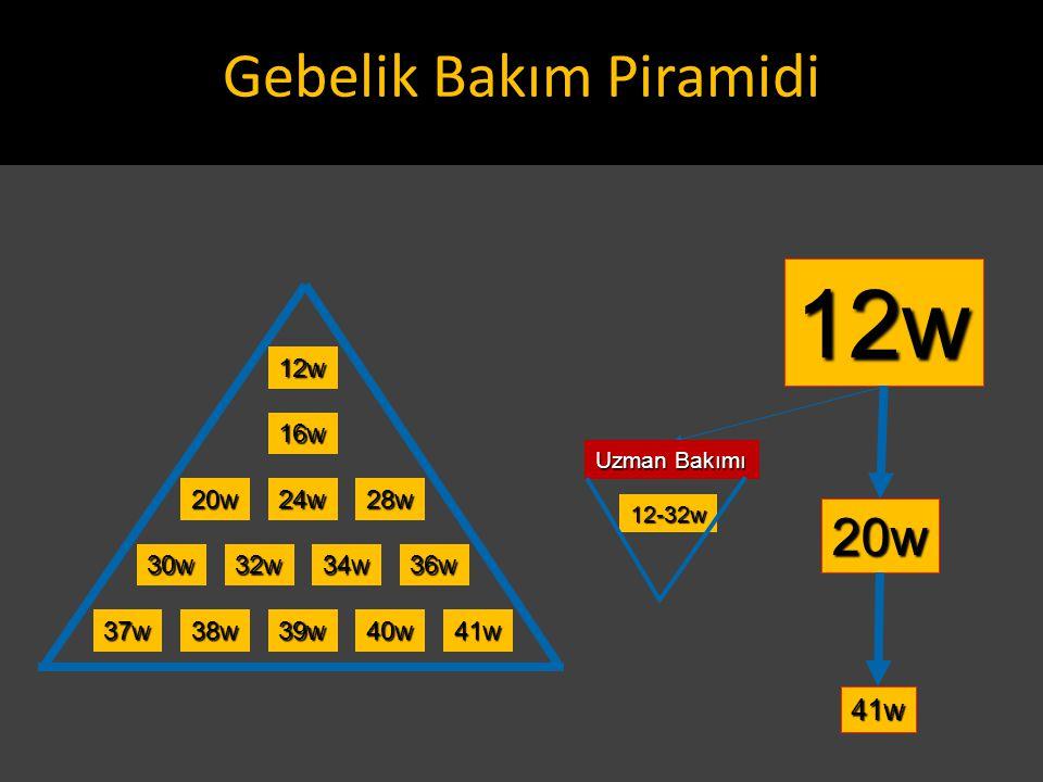 Gebelik Bakım Piramidi