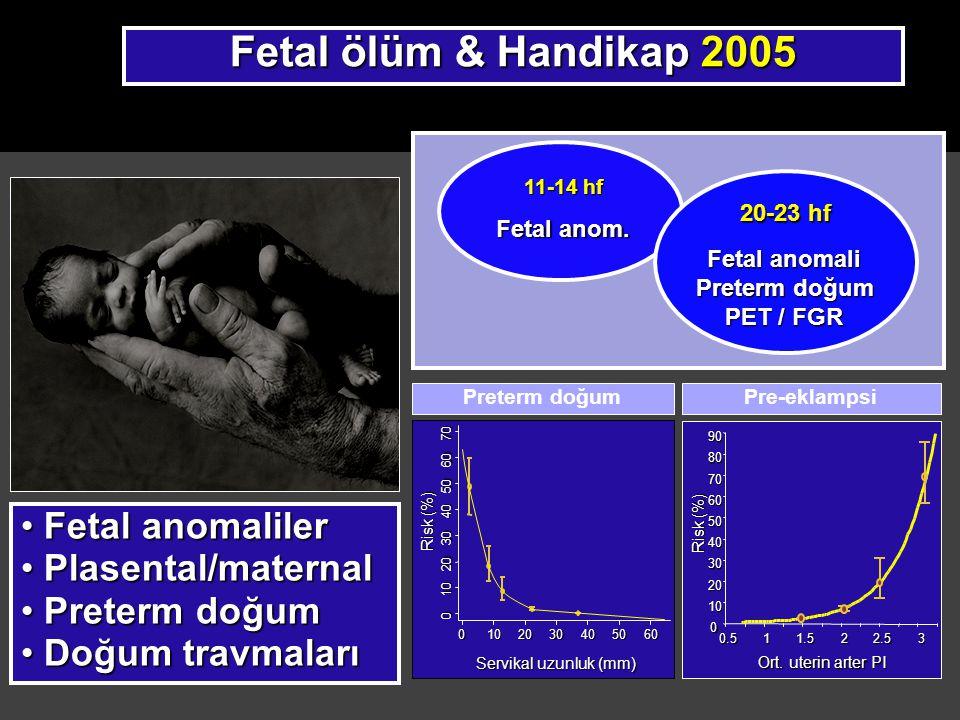 Fetal ölüm & Handikap 2005 Fetal anomaliler Plasental/maternal