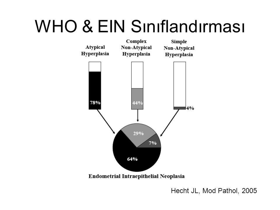 WHO & EIN Sınıflandırması