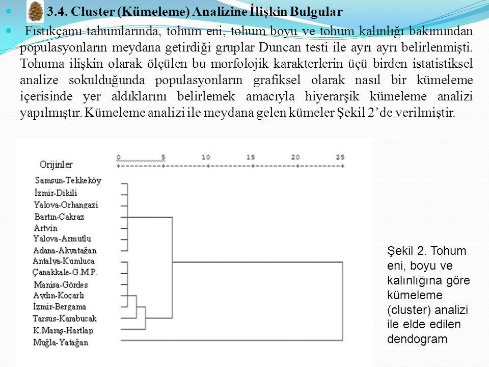 3.4. Cluster (Kümeleme) Analizine İlişkin Bulgular