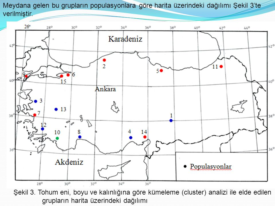 Meydana gelen bu grupların populasyonlara göre harita üzerindeki dağılımı Şekil 3'te verilmiştir.