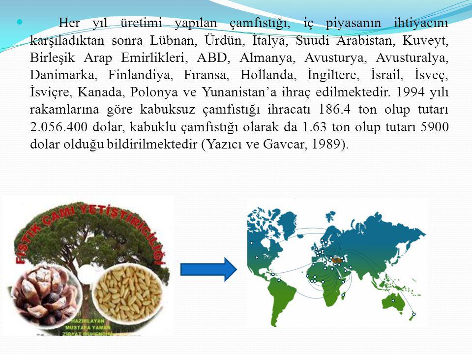 Her yıl üretimi yapılan çamfıstığı, iç piyasanın ihtiyacını karşıladıktan sonra Lübnan, Ürdün, İtalya, Suudi Arabistan, Kuveyt, Birleşik Arap Emirlikleri, ABD, Almanya, Avusturya, Avusturalya, Danimarka, Finlandiya, Fıransa, Hollanda, İngiltere, İsrail, İsveç, İsviçre, Kanada, Polonya ve Yunanistan'a ihraç edilmektedir.