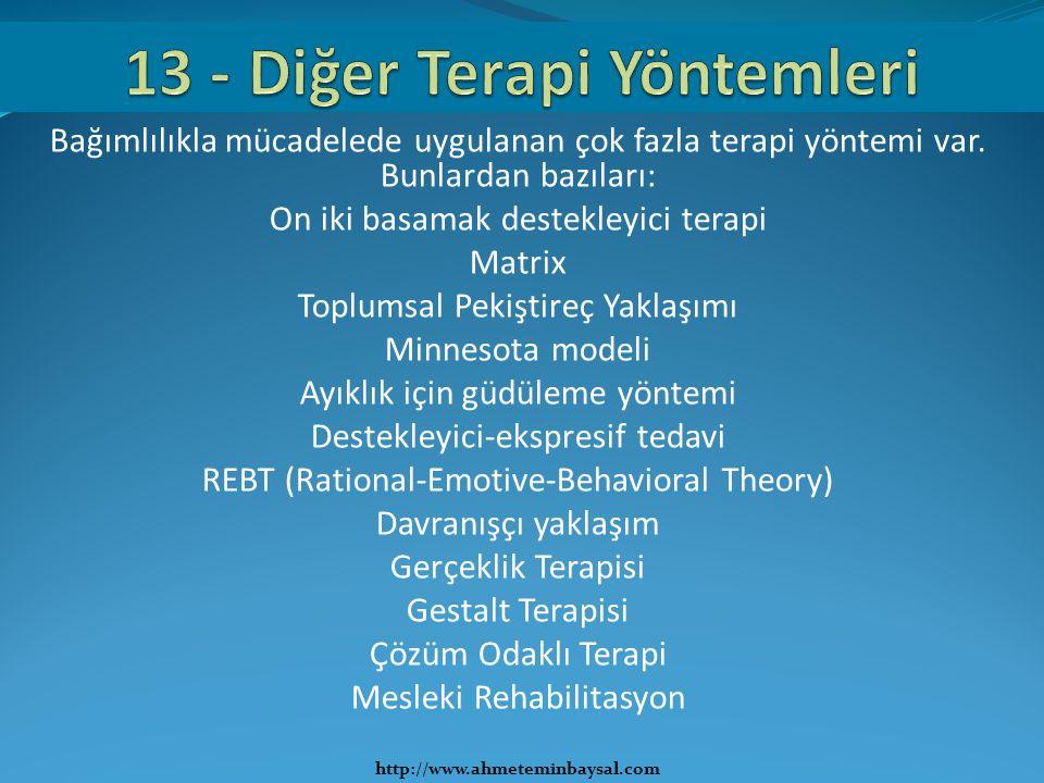 13 - Diğer Terapi Yöntemleri