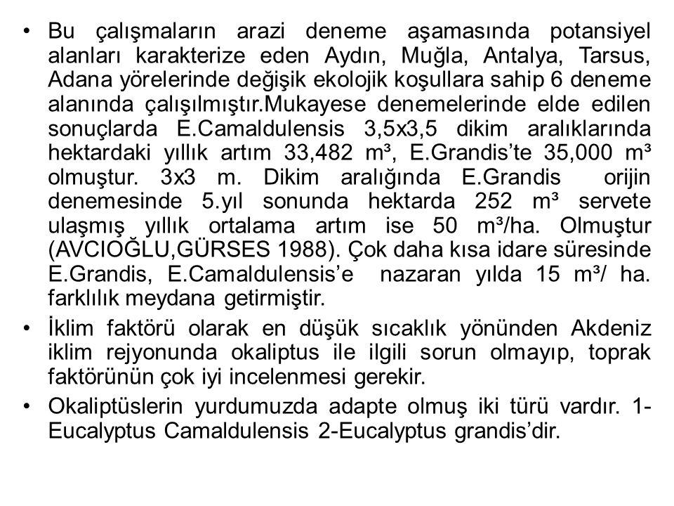 Bu çalışmaların arazi deneme aşamasında potansiyel alanları karakterize eden Aydın, Muğla, Antalya, Tarsus, Adana yörelerinde değişik ekolojik koşullara sahip 6 deneme alanında çalışılmıştır.Mukayese denemelerinde elde edilen sonuçlarda E.Camaldulensis 3,5x3,5 dikim aralıklarında hektardaki yıllık artım 33,482 m³, E.Grandis'te 35,000 m³ olmuştur. 3x3 m. Dikim aralığında E.Grandis orijin denemesinde 5.yıl sonunda hektarda 252 m³ servete ulaşmış yıllık ortalama artım ise 50 m³/ha. Olmuştur (AVCIOĞLU,GÜRSES 1988). Çok daha kısa idare süresinde E.Grandis, E.Camaldulensis'e nazaran yılda 15 m³/ ha. farklılık meydana getirmiştir.