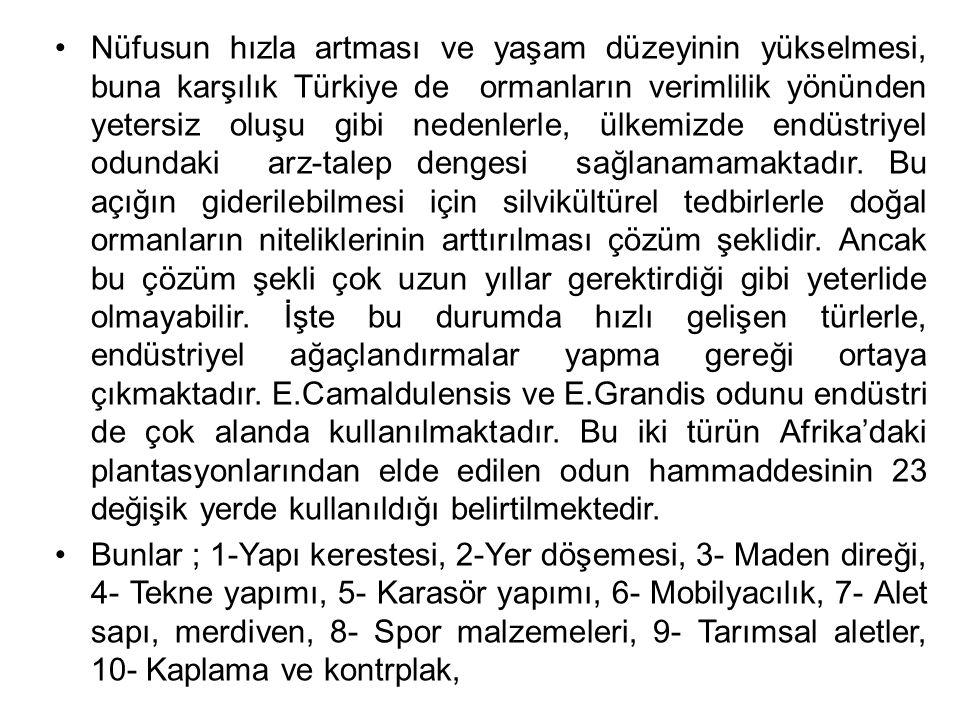 Nüfusun hızla artması ve yaşam düzeyinin yükselmesi, buna karşılık Türkiye de ormanların verimlilik yönünden yetersiz oluşu gibi nedenlerle, ülkemizde endüstriyel odundaki arz-talep dengesi sağlanamamaktadır. Bu açığın giderilebilmesi için silvikültürel tedbirlerle doğal ormanların niteliklerinin arttırılması çözüm şeklidir. Ancak bu çözüm şekli çok uzun yıllar gerektirdiği gibi yeterlide olmayabilir. İşte bu durumda hızlı gelişen türlerle, endüstriyel ağaçlandırmalar yapma gereği ortaya çıkmaktadır. E.Camaldulensis ve E.Grandis odunu endüstri de çok alanda kullanılmaktadır. Bu iki türün Afrika'daki plantasyonlarından elde edilen odun hammaddesinin 23 değişik yerde kullanıldığı belirtilmektedir.