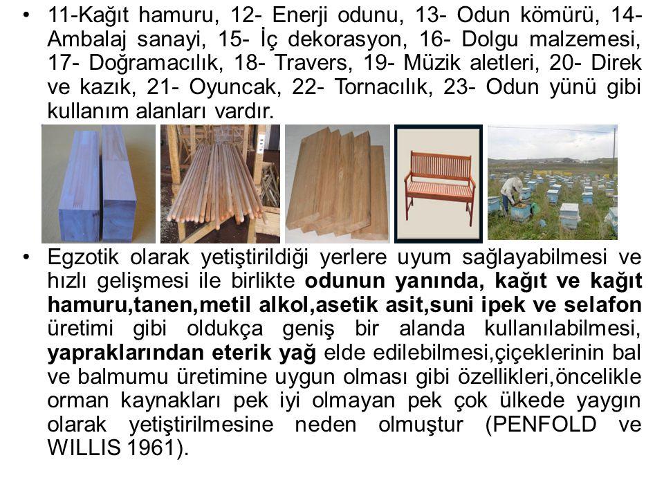 11-Kağıt hamuru, 12- Enerji odunu, 13- Odun kömürü, 14- Ambalaj sanayi, 15- İç dekorasyon, 16- Dolgu malzemesi, 17- Doğramacılık, 18- Travers, 19- Müzik aletleri, 20- Direk ve kazık, 21- Oyuncak, 22- Tornacılık, 23- Odun yünü gibi kullanım alanları vardır.