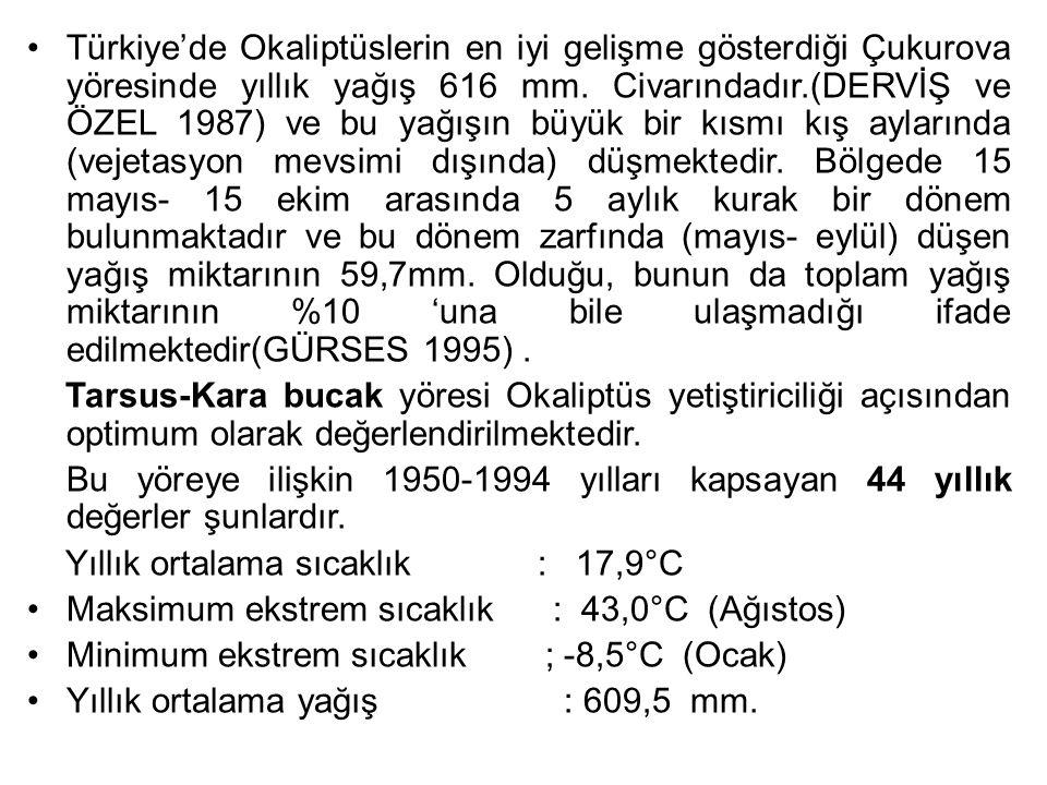 Türkiye'de Okaliptüslerin en iyi gelişme gösterdiği Çukurova yöresinde yıllık yağış 616 mm. Civarındadır.(DERVİŞ ve ÖZEL 1987) ve bu yağışın büyük bir kısmı kış aylarında (vejetasyon mevsimi dışında) düşmektedir. Bölgede 15 mayıs- 15 ekim arasında 5 aylık kurak bir dönem bulunmaktadır ve bu dönem zarfında (mayıs- eylül) düşen yağış miktarının 59,7mm. Olduğu, bunun da toplam yağış miktarının %10 'una bile ulaşmadığı ifade edilmektedir(GÜRSES 1995) .