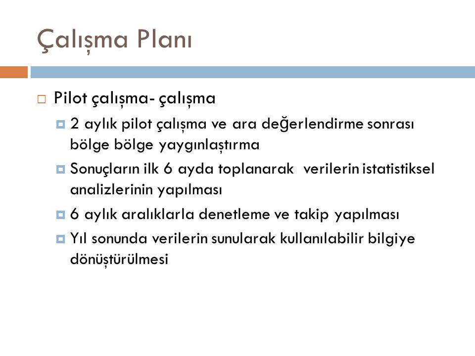 Çalışma Planı Pilot çalışma- çalışma