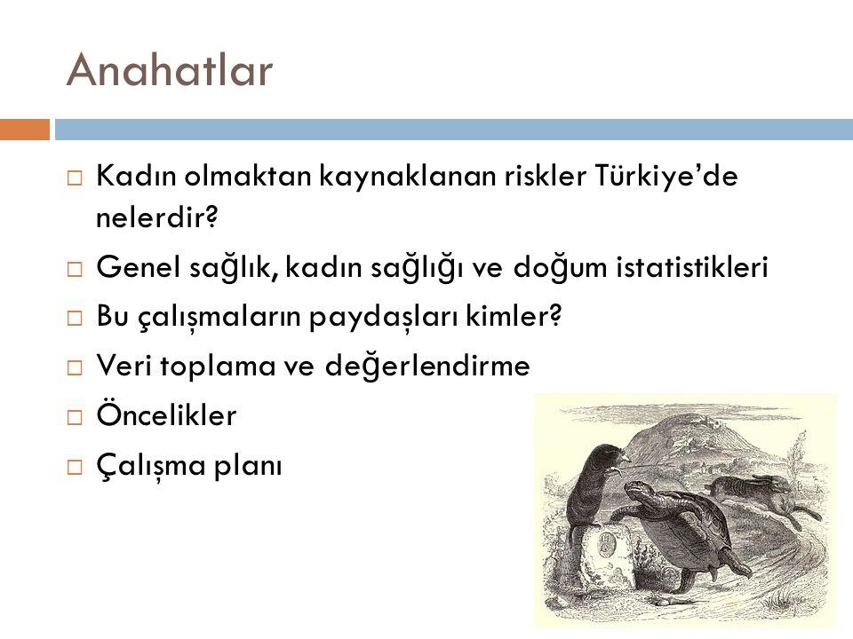 Anahatlar Kadın olmaktan kaynaklanan riskler Türkiye'de nelerdir