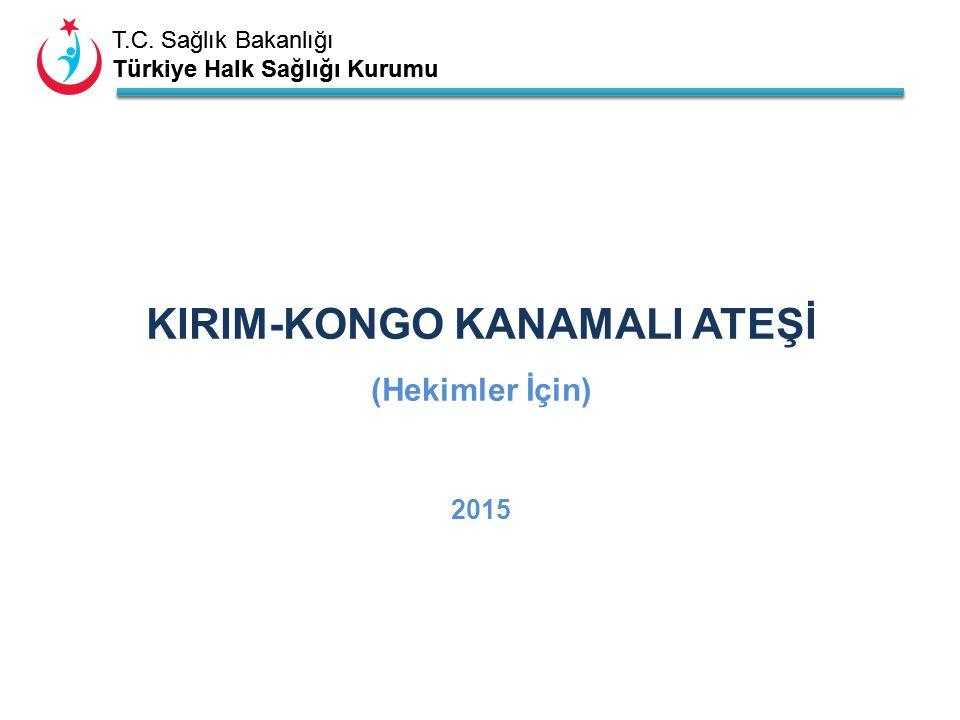 KIRIM-KONGO KANAMALI ATEŞİ