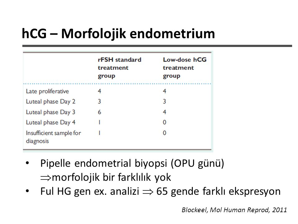 hCG – Morfolojik endometrium