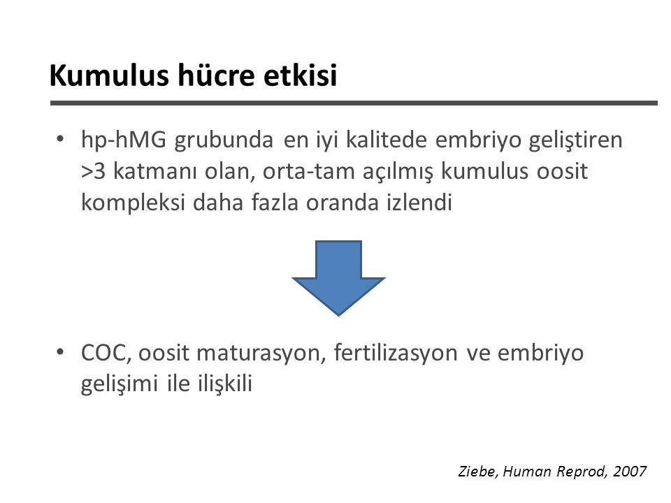 Kumulus hücre etkisi