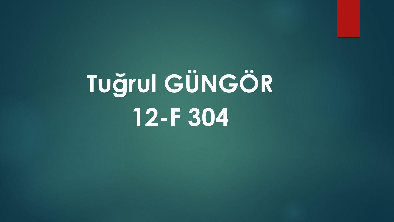 Tuğrul GÜNGÖR 12-F 304