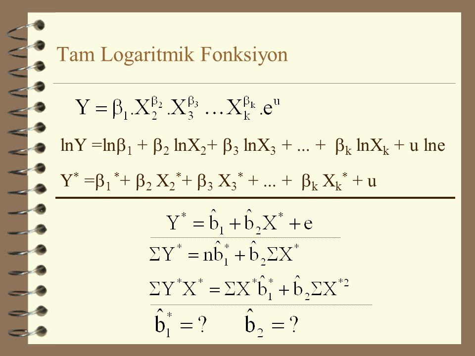 Tam Logaritmik Fonksiyon