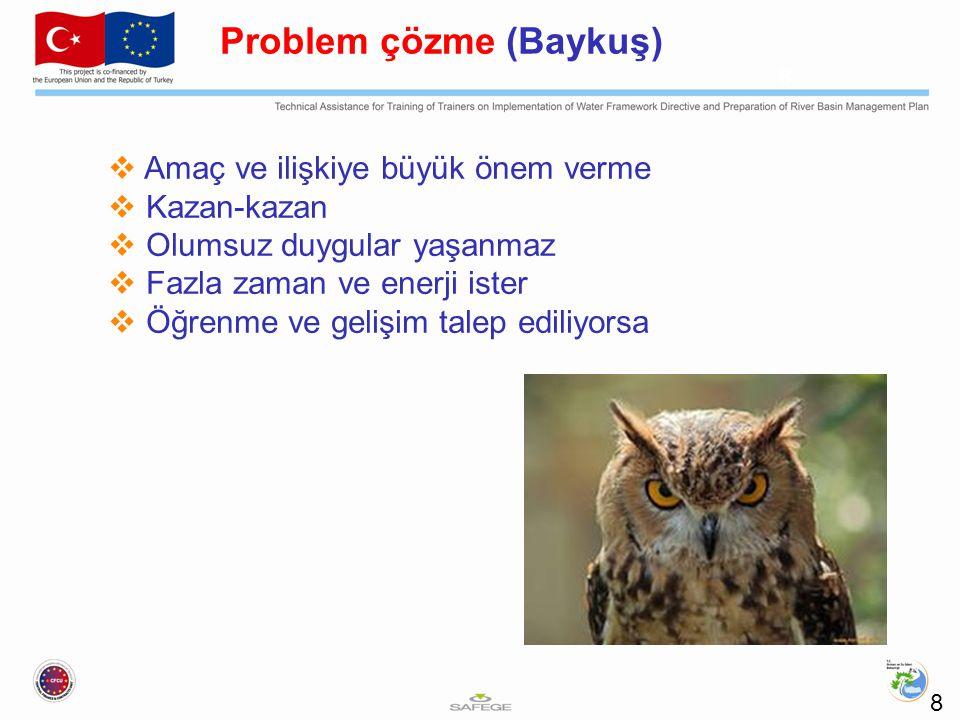 Problem çözme (Baykuş)
