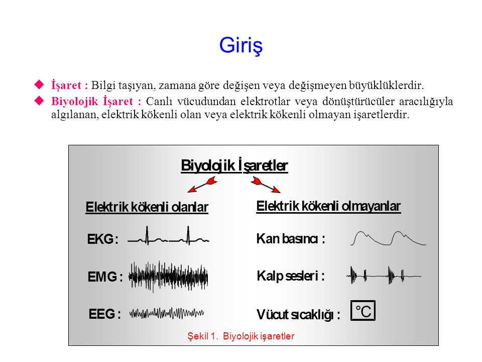 Şekil 1. Biyolojik işaretler