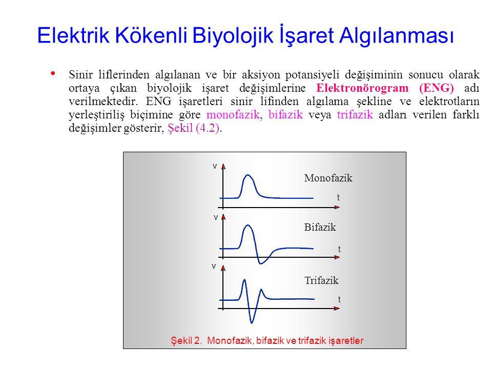 Elektrik Kökenli Biyolojik İşaret Algılanması