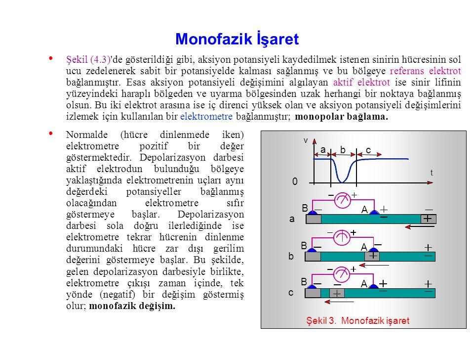 Şekil 3. Monofazik işaret