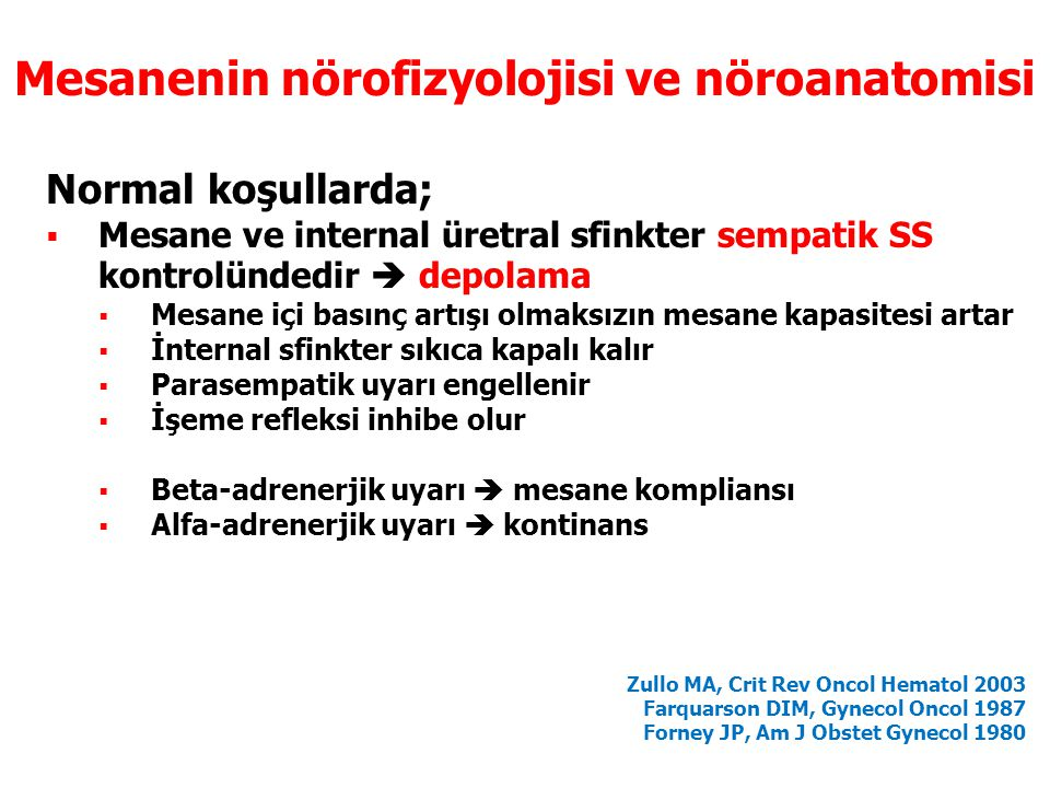 Mesanenin nörofizyolojisi ve nöroanatomisi