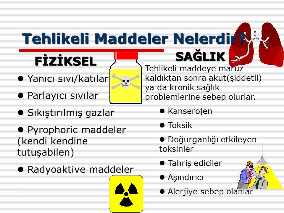 Tehlikeli Maddeler Nelerdir