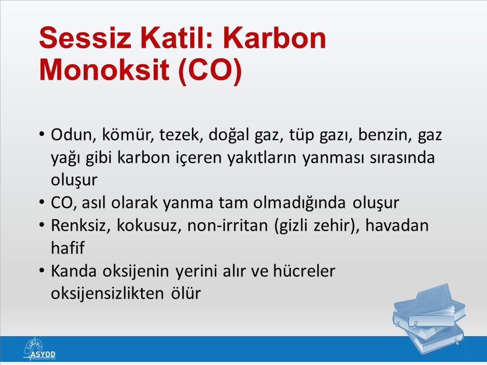 Sessiz Katil: Karbon Monoksit (CO)