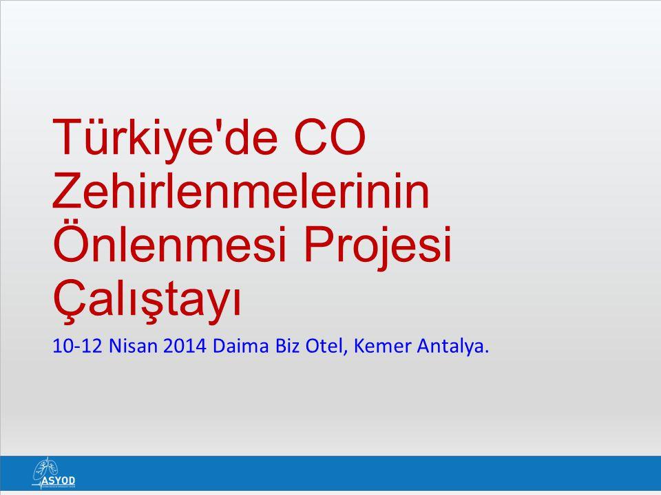 Türkiye de CO Zehirlenmelerinin Önlenmesi Projesi Çalıştayı