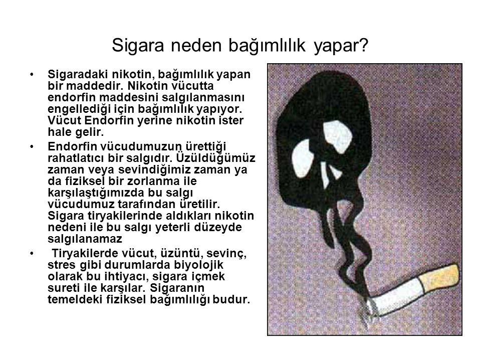 Sigara neden bağımlılık yapar