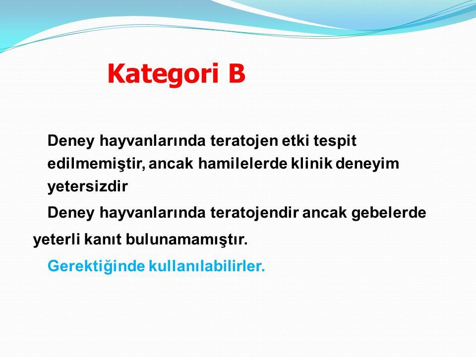 Kategori B