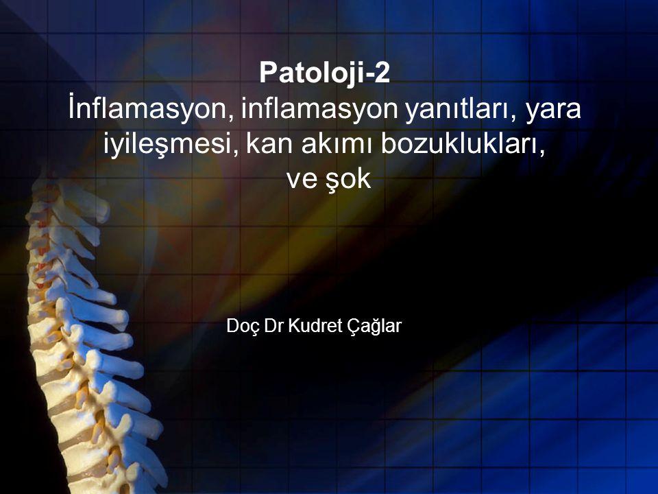Patoloji-2 İnflamasyon, inflamasyon yanıtları, yara iyileşmesi, kan akımı bozuklukları, ve şok