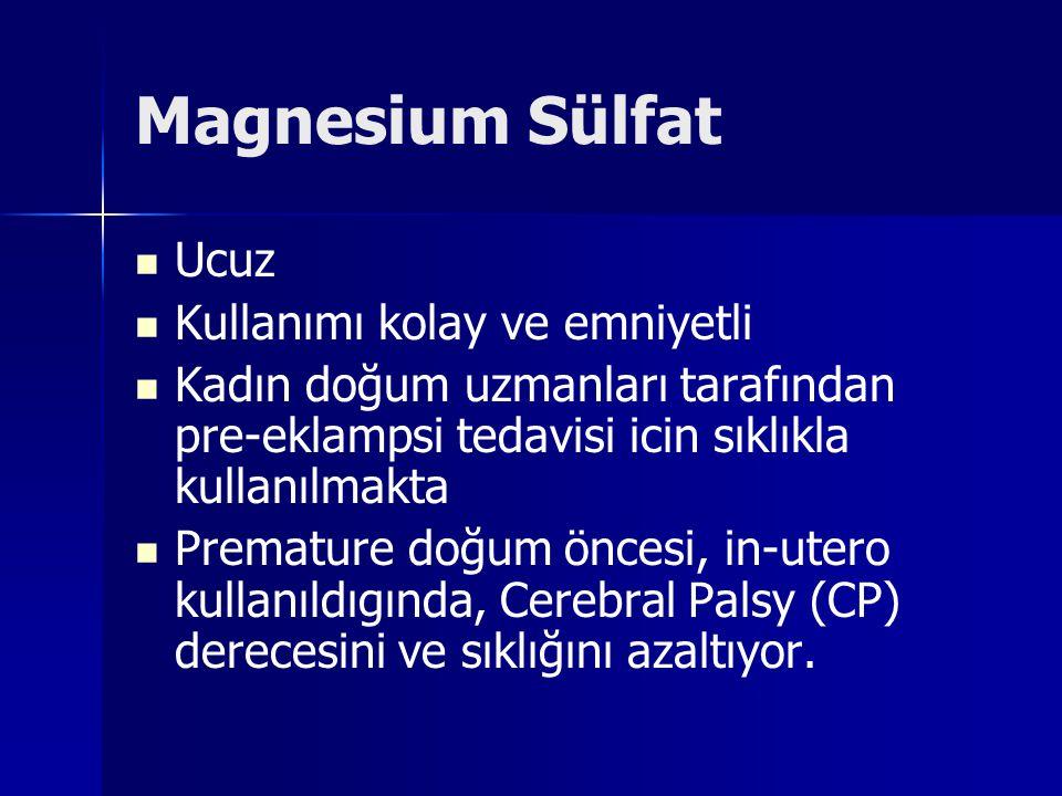Magnesium Sülfat Ucuz Kullanımı kolay ve emniyetli