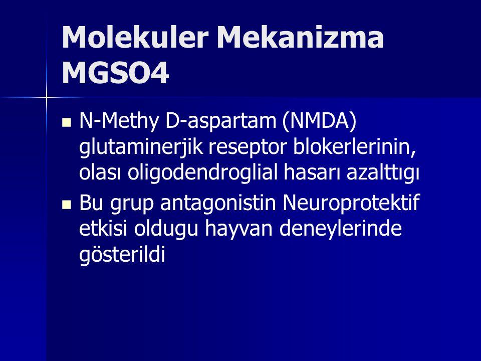 Molekuler Mekanizma MGSO4