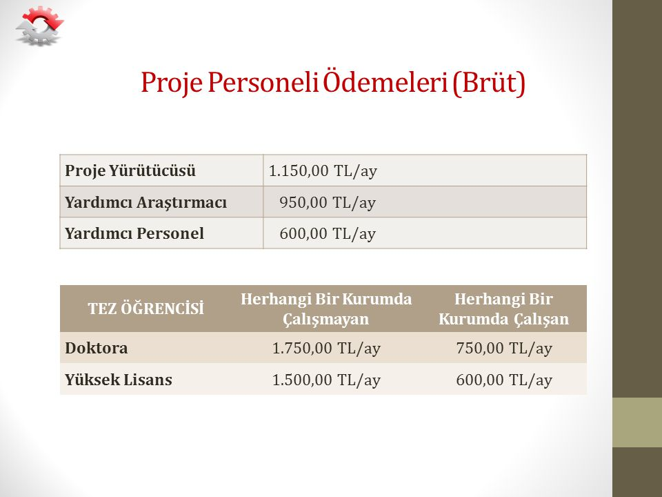 Proje Personeli Ödemeleri (Brüt)